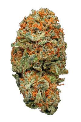 AK-47 - Hybrid Cannabis Strain