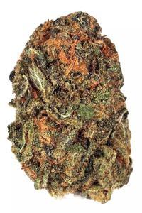 Acapulco Gold - Sativa Cannabis Strain
