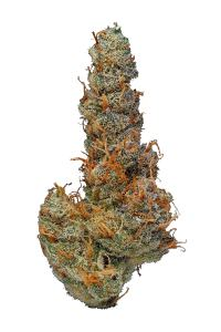 Ace Of Spades - Indica Cannabis Strain