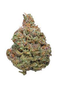 Afghan Kush - Indica Cannabis Strain