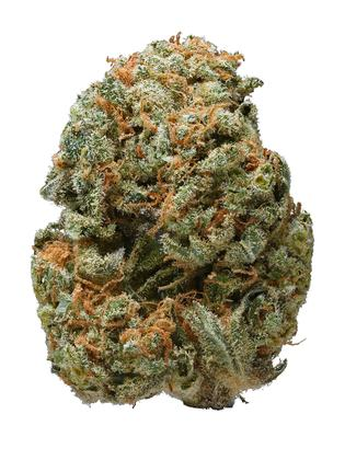 Alpha Blue - Sativa Cannabis Strain