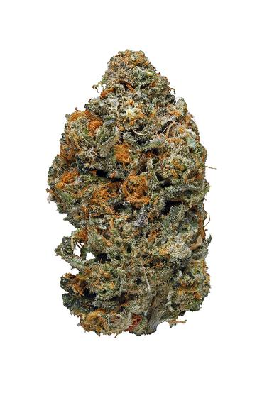Animal Cookies - Hybrid Cannabis Strain