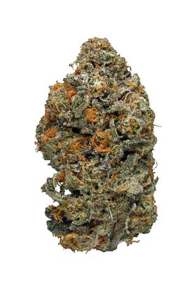 Animal Cookies - Híbrido Cannabis Strain