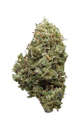 Arjan's Strawberry Haze Strain - Sativa Cannabis Review