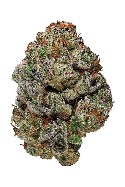 Birthday Cake Hybrid Cannabis Strain Video Cbd Thc Hytiva