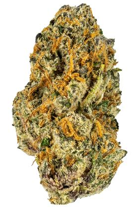 Black Cherry Punch - Indica Cannabis Strain
