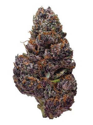 Black Cherry Soda - Hybrid Cannabis Strain
