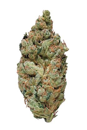 Black Diesel - Sativa Cannabis Strain