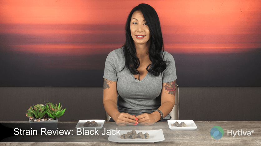 Strain Review: Black Jack Youtube Video