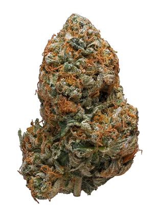 Black Tuna - Sativa Cannabis Strain