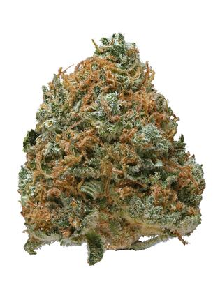 Blue Boy - Hybrid Cannabis Strain