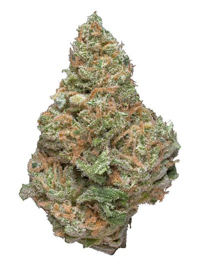 Blue Dot - Sativa Cannabis Strain