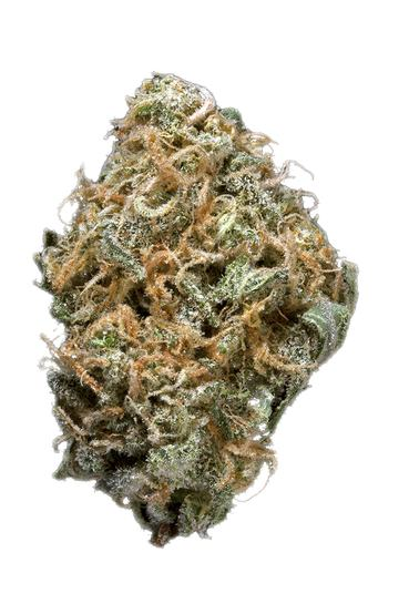 Blue Dream Haze - Hybrid Cannabis Strain