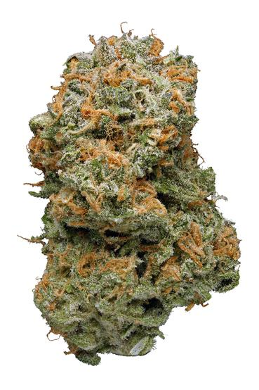 Blue Dream - Hybrid Cannabis Strain