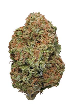 Blue Hawaiian - Hybrid Cannabis Strain