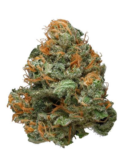 Blue Lights - Indica Cannabis Strain