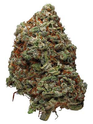 Blue Moon Rocks - Hybrid Cannabis Strain
