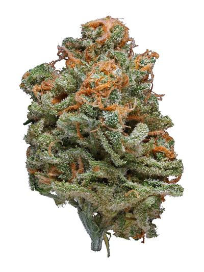 Blue Nightmare - Hybrid Cannabis Strain