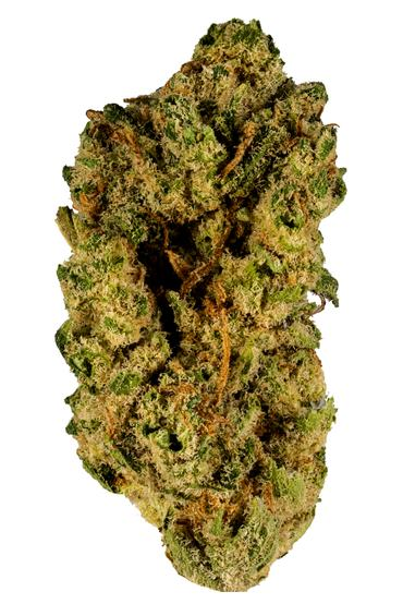Blue Ridge - Hybrid Cannabis Strain