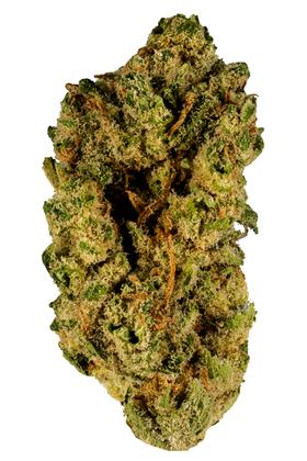 Blue Ridge - Híbrido Cannabis Strain