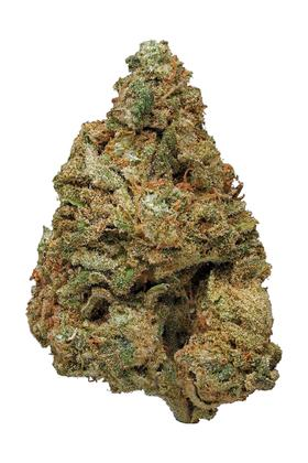 Blue Widow - Hybrid Cannabis Strain