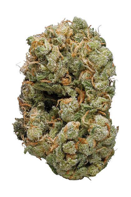 Blueberry Diesel Hybrid Cannabis Strain Review CBD THC