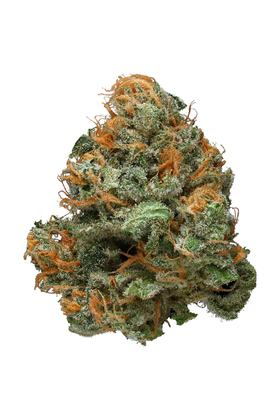 Blueberry Haze - Hybrid Cannabis Strain