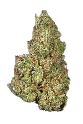 Blueberry Headband - Hybrid Cannabis Strain