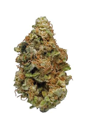 Bordello - Hybrid Cannabis Strain