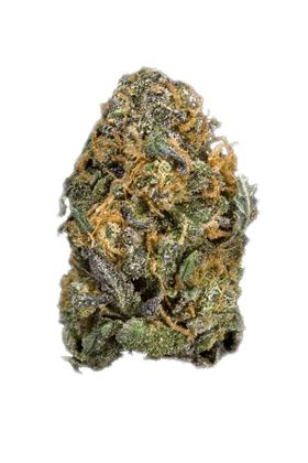 Boysenberry - Hybrid Cannabis Strain