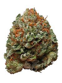 Bubba Kush - Indica Cannabis Strain