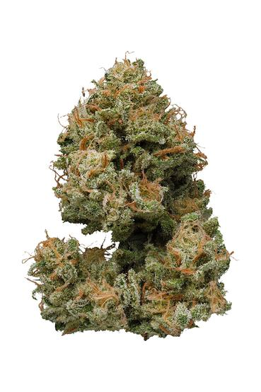 Bubbleberry - Hybrid Cannabis Strain