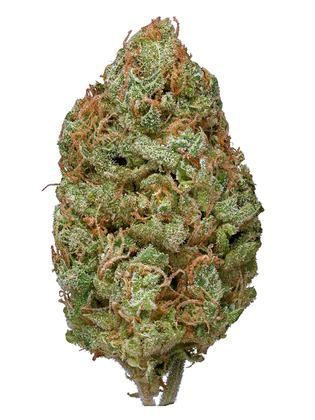 Bubble Gum - Hybrid Cannabis Strain