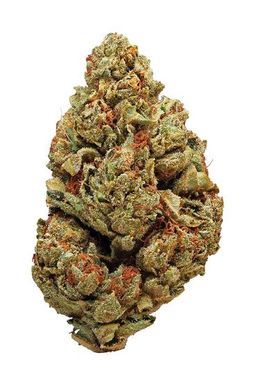 Chem Valley Kush - Hybrid Cannabis Strain