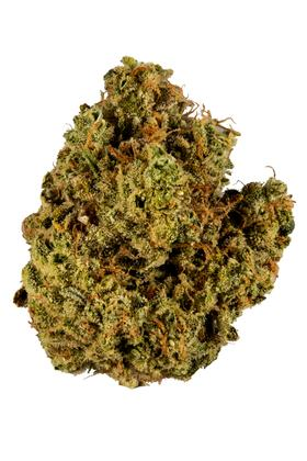 Cherry Chem - Hybrid Cannabis Strain