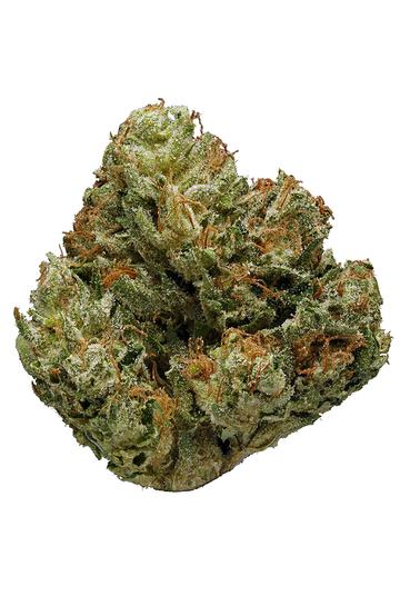 Cherry Creek OG - Hybrid Cannabis Strain
