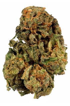 Cherry Diesel Strain - Hybrid Cannabis Video, CBD, THC