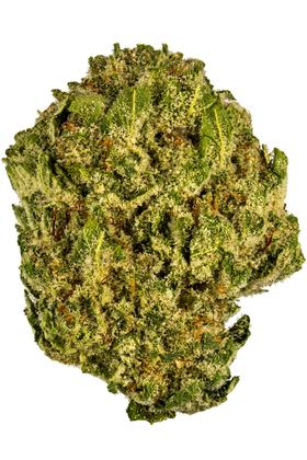 Cherry Lime Haze - Sativa Cannabis Strain