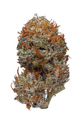 Chocolate Hashberry - Hybrid Cannabis Strain
