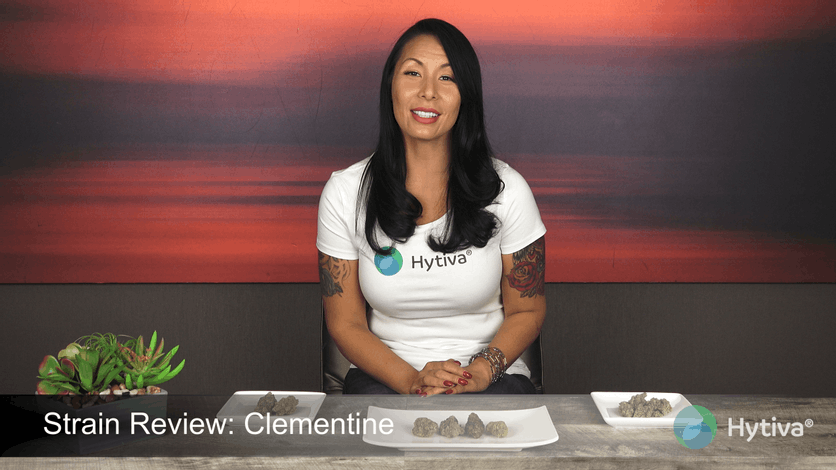 Strain Review: Clementine Youtube Video