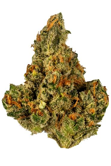 Cookies and Dream - Hybrid Cannabis Strain