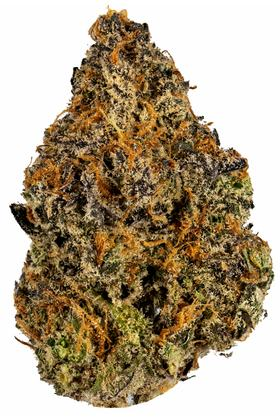 Crunch Berries - Híbrido Cannabis Strain