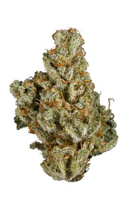 Dirty Girl - Sativa Cannabis Strain