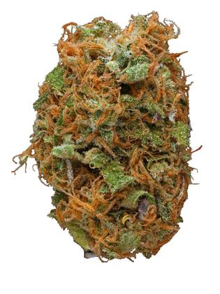 Dirty Hairy - Hybrid Cannabis Strain