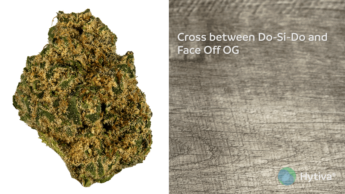 Strain Review: Dosi-Face Youtube Video