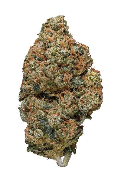 Double Diesel - Sativa Cannabis Strain