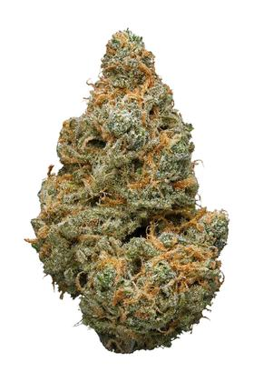 Double Dream - Híbrido Cannabis Strain