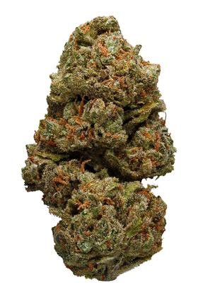 Dream Queen - Hybride Cannabis Strain