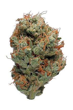 East Coast Sour Diesel - Sativa Cannabis Strain