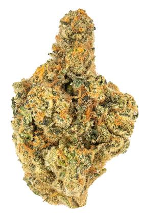 Ego Checker - Hybrid Cannabis Strain